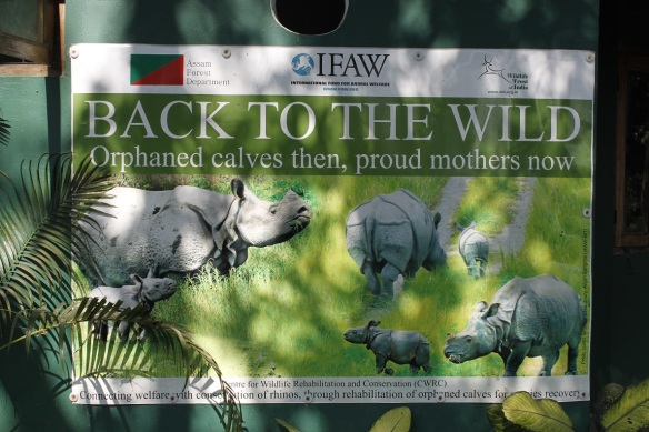 Kaziranga Centre for Wildlife Rehabilitation